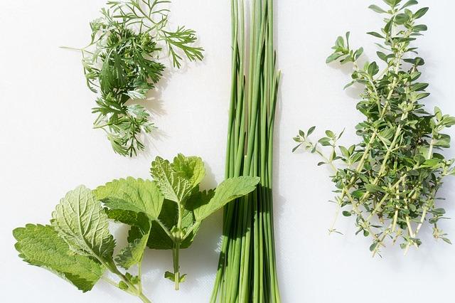 Le printemps dans votre assiette, les 4 saisons - Projet la Passerelle