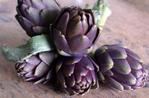 Petits violets de Pce