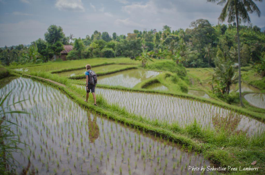 15-mars-deviens-vietnamien