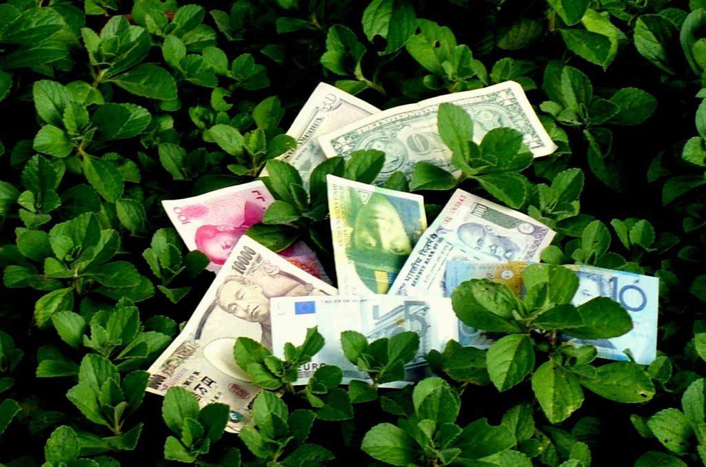 banque-ethique-ecologie