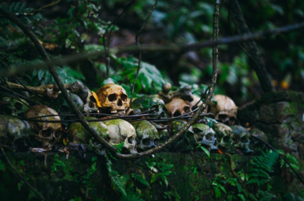 L'écologie & le Sacré du Moyen Âge à aujourd'hui