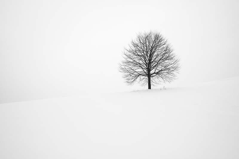 simplicite-sobriete-structure-hiver