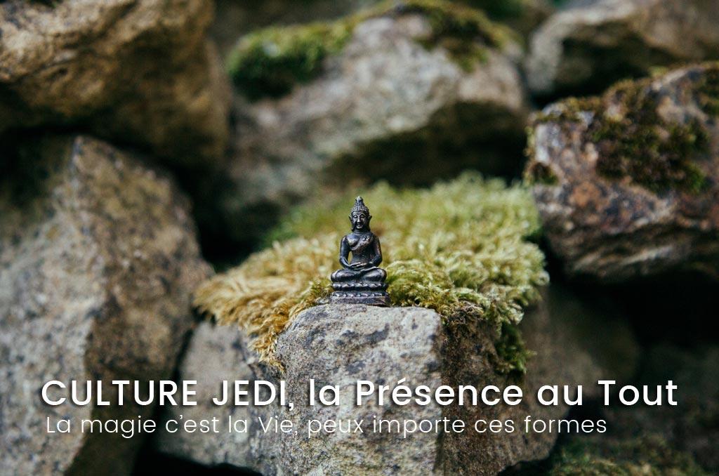 Culture Jedi, la spiritualité même au quotidien.