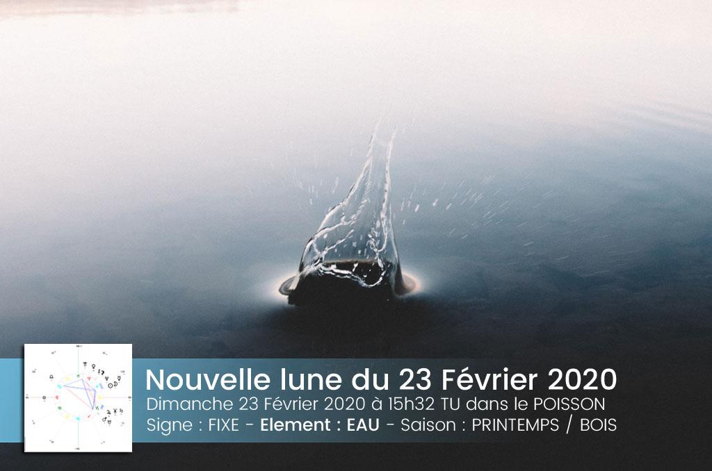 Nouvelle Lune en Poissons, Février 2020 – On a déjà perdu