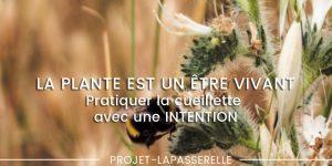 la-plante-est-un-etre-vivant-intention